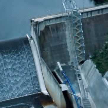 tallowa dam fishlift