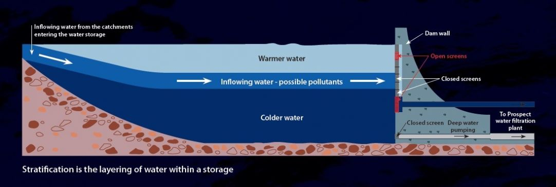 A diagram of a cross-section of layers in a lake