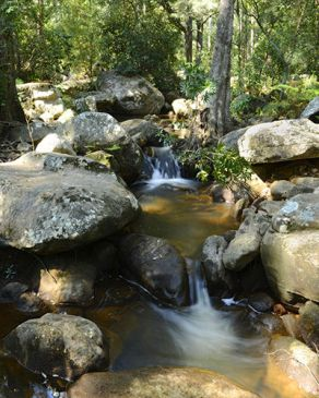 water trickles down stream