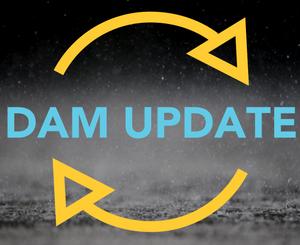 Dam update icon