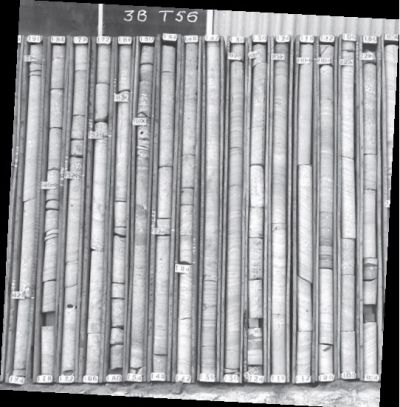 a line of 75 mm core drill samples