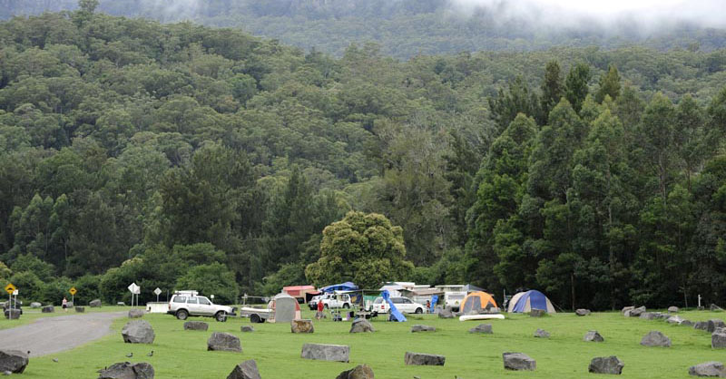 Camping with bushland and mountain behind