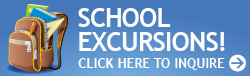 School excursions button