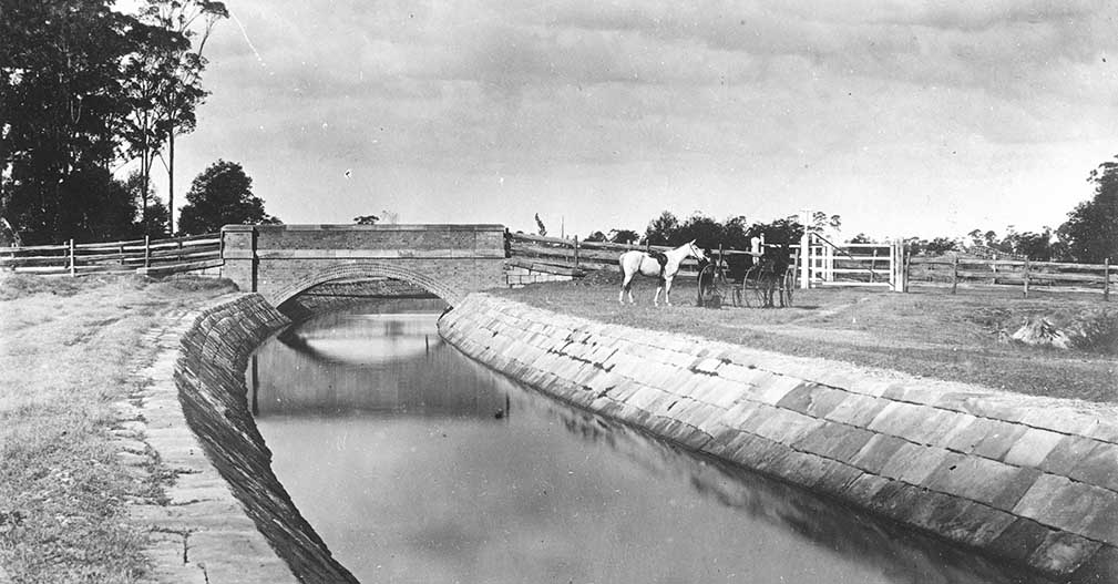 The Upper Canal An Unsung Hero Of Sydney S History